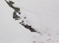 The Ditch in Winter