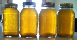 Canned Soup Stock