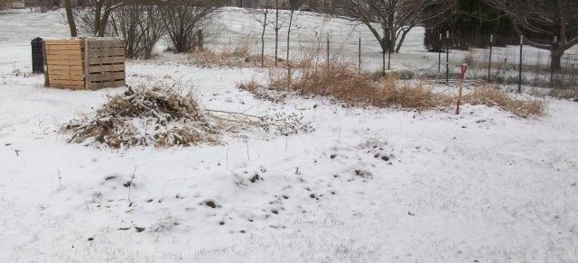 Garden After Snowfall