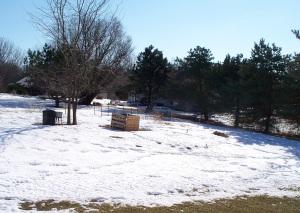 Warm Winter Temperatures