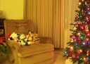 Christmas at Home