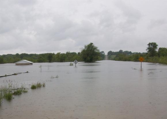 Atherton Wetland