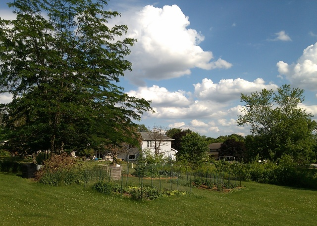 Clouds over the Garden