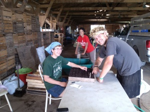 Working in the Barn