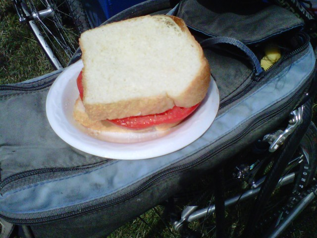 Fresh Tomato Sandwiches