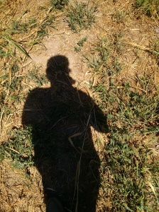Silhouette on Parched Ground
