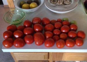Last Fresh Garden Tomatoes