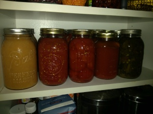 Tomatoes on the Pantry Shelf