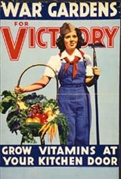 victory garden 3t01136u