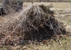 Growing Burn Pile