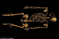Richard III Remains