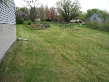 Cleaned Up Yard