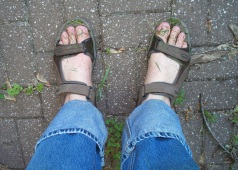 New Garden Shoes