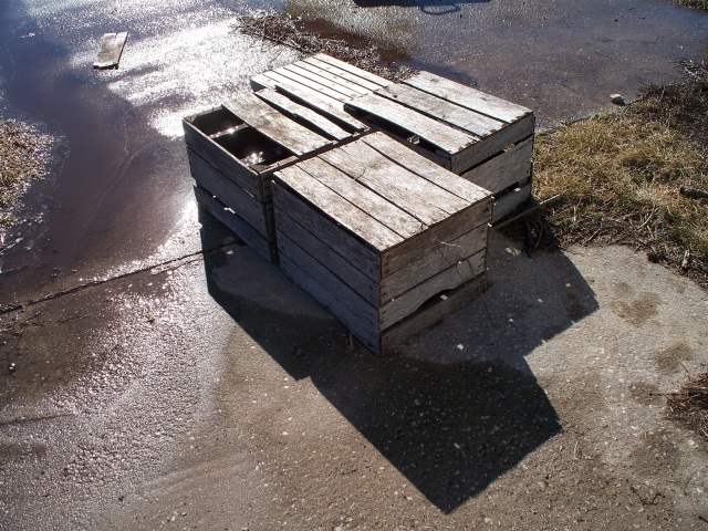Crates Sunbathing
