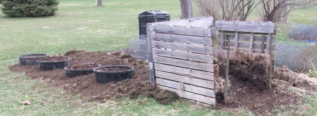 Raised Beds Next to Compost Bins
