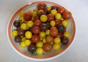Cherry Tomatoes from the Garden